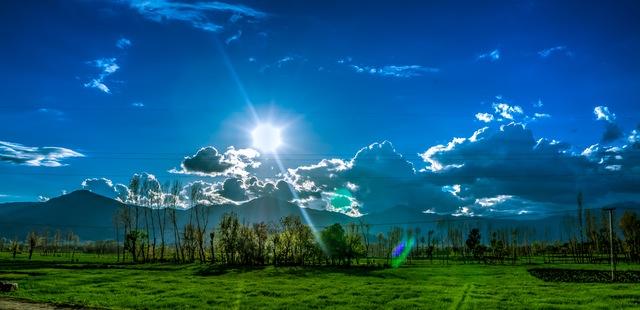 Pengertian Dan Definisi Lingkungan Hidup Lingkungan Hidup