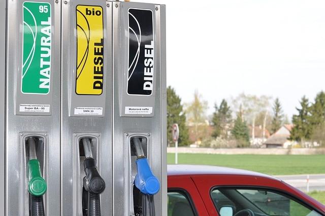 Biosolar bahan bakar nabati masa depan dunia
