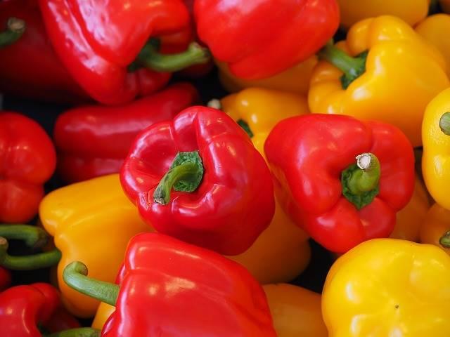 Mengapa Harga Bahan Makanan Organik Lebih Mahal Dari Yang Non Organik?