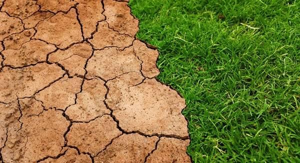 10 Manfaat Laut Bagi Kehidupan Manusia - mengurangi efek rumah kaca pemanasan global