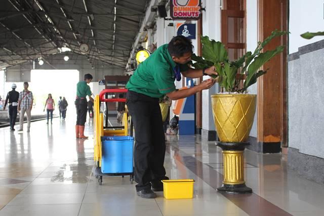tips merawat tanaman hias dalam ruangan